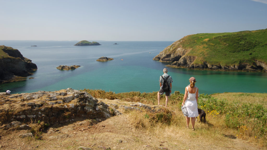 Walks on the Pembrokeshire Coast Path at the Gribyn, Solva