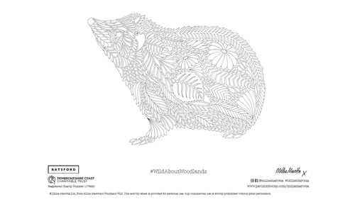 Millie Marotta Wild About Woodlands competition hedgehog colouring in sheet.